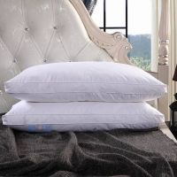 washed white goose feather pillow