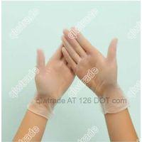 PVC Disposable Gloves