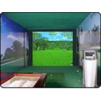 3D golf simulator