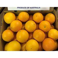 Australian Navel oranges