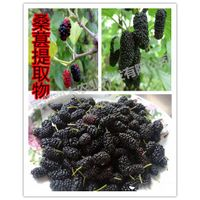 antioxidant mulberry anthocyanidins 25%