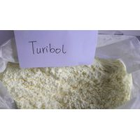 99% Anabolic Raw Steroids Hormone Powder Turibol for body building