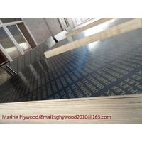 18mm waterproof marine plywood