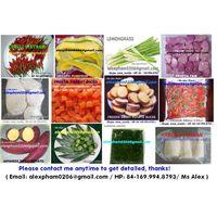 frozen pumpkin/ frozen taro/ frozen okra/ frozen vegetables/ frozen garlic in SKYPE thumbnail image