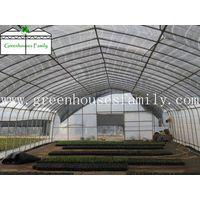 Plastic Greenhouses thumbnail image