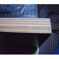 12mm Black Waterproof Film Faced Plywood Phenolic Board