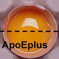 Beta-apo-8-carotenoic acid ethyl ester thumbnail image