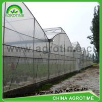 Roof Ventilation Greenhouse Fixed Window Greenhouse hidroponica multi-span Greenhouse for sale