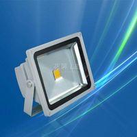 Cob 50W LED flood Light LED Projector light