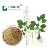 Epimedium Extract ,Icarrins 20% herbal extract