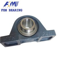 Hosting Pillow Block with Stainless Steel Bearing Plastic Bearings