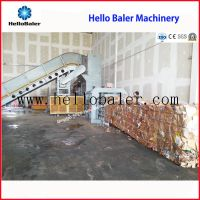 Hydraulic Semi-Automatic Waste Paper Baler with Conveyor (HSA4-6)