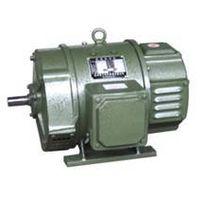 D2 Series DC Motor