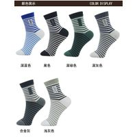 QK Stripe Sports socks