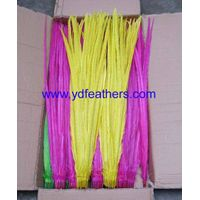 Dyed Bleached Ringneck Pheasant Tail Feather