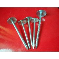 galvanized ROOFING nails with umbrella (factory direct)