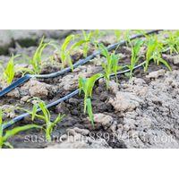 Micro drip Irrigation System Micro Spray Tape