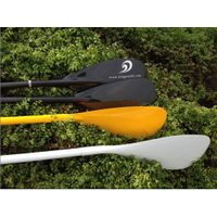 Carbon stand up paddle with ABS edge protect