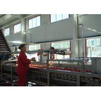 Tomato paste processing Plant, tomato plant, tomato processing machine, Low price-high quality, frui