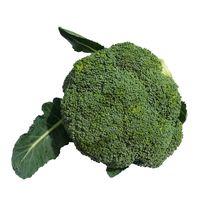 Top quality fresh broccoli with custom planting