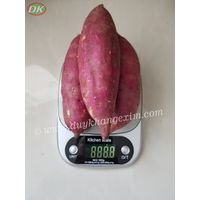 SWEET POTATO |Whatsapp No. +84 903 887 753 Origin Vietnam thumbnail image
