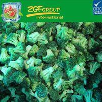 Broccoli Plant Broccoli Raab Yellow Broccoli