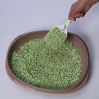 Inhibits bacteria cat litter green tea pet bedding