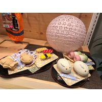 [Looking for Retailers&Wholesaler] Japanes Pet Food -Natulla thumbnail image