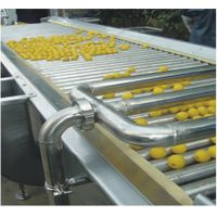 Fruit sorting and conveying machine