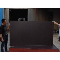 black film face shuttering plywood