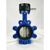 Ductile Iron Lug-type Butterfly Valve