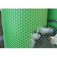Plastic Poultry Fencing Net