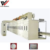 Full Servo Functional Soft Breast Pad Production Line