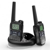 Gmrs/PMR/Frs 0.5W/1W Two Way Radio Walkie Talkie R9 Support Digital and Analog Mode Ctcss/Dcs Progra