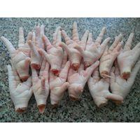 100% Frozen chicken Paw thumbnail image