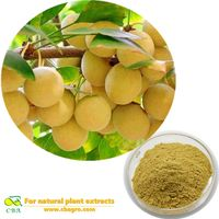CBA Organic Ginkgo Biloba Gingko Biloba Leaves Extract Powder