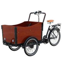 SLS 3 Wheel Electric Assist Cargo Bike/Cargo Bicycle for Mother and Baby