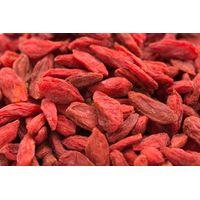 Goji Berry thumbnail image