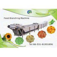 Continues Blanching machine thumbnail image