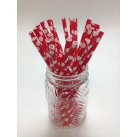Custom Aardvark 10mm Paper Drinking Straws