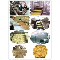Large Scale Frozen French Fries Production Line