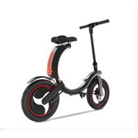 GW Foldable Electric Bicycle