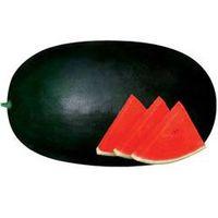 Hybrid Vegetable Seed/Watermelon Seed-FST 9700 thumbnail image