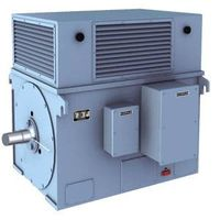Y series large-scale high voltage three-phase asynchronous electric  motor (6KV 10KV)