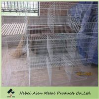 males rabbit cage