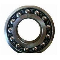 Spherical Roller Bearing 1310