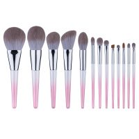 13PCS Makeup Brush Set, Mcf Synthetic Hair