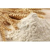 Wheat Flour For Bread thumbnail image