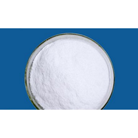 L-Carnitine Base Powder
