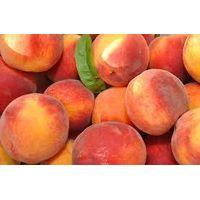 Fresh Peach thumbnail image